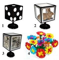 "Tora Smart Glassy Cube (4 Times)   <img border=""0"" src=""http://kapmagic.com/products_pictures/FREEshippingw5w.gif"" width=""175"" height=""50""></p>"