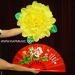 Torch to Fan to Peony  <img border=&quot;0&quot; src=&quot;http://kapmagic.com/products_pictures/FREEshippingw5w.gif&quot; width=&quot;175&quot; height=&quot;50&quot;></p>